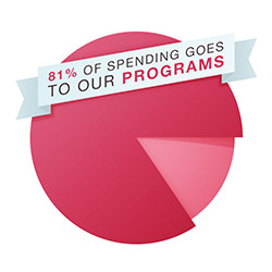 Spending-programs-pie-chart